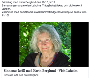 karin_berglund_foredrag